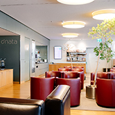Zurich Airport Lounge, , small